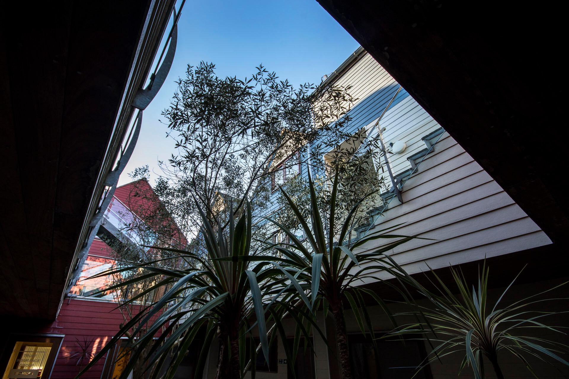 Sanders Studios_Courtyard